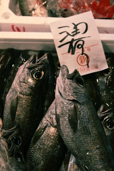Tsukiji - 1